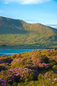 Killary Fjord, Connemara